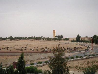 Seřadiště velbloudů