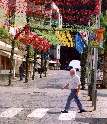Ulice zdobená květinami (nahrál: admin2)