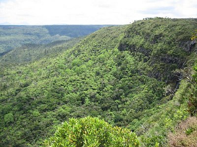 NP Black River Gorges