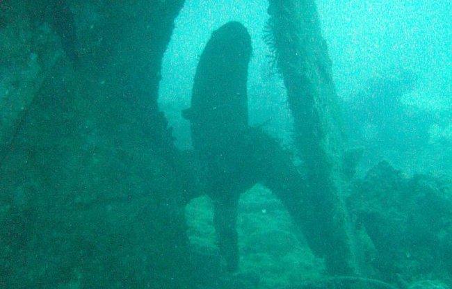Potápění v Egyptě (2004)