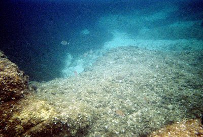 Potápanie v Kassiopi (nahrál: ladybee (kapab.sk))