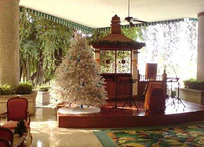 Vianočná výzdoba - vo vstupnej hale hotela (nahrál: V.Revický)