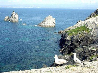 provensálské pobřeží 1 (nahrál: admin)