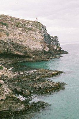Taiaroa Head (nahrál: admin)