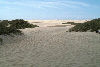 poušť na Playa de Inglés (nahrál: Karolko)