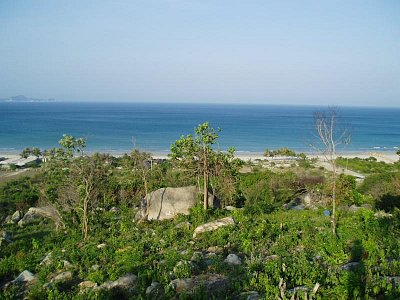 Jungle Beach-okolí (nahrál: admin)