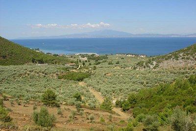 Nad Skalou Rachoni - Olivy, borovice, včelí úly a výhled na pevninu (nahrál: Milan Pokorný)
