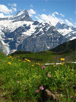 Jungfrau1 (nahrál: admin)