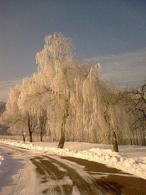 Zima u Slapské přehrady