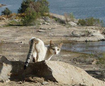 Plavba po Nilu-pokračování :-)