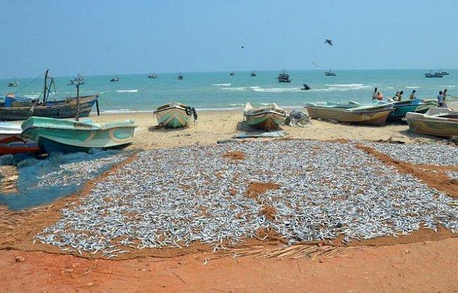 Znovuobjevený sever Šrí Lanky