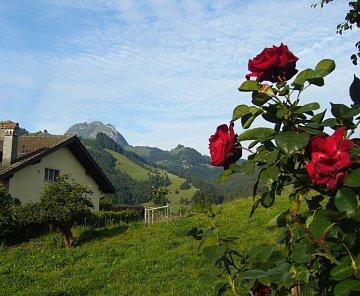 Švýcarsko - 2011