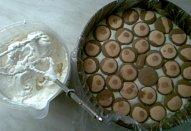 Mlsný kokosák