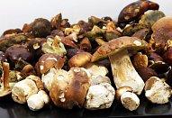 Zavařování hub