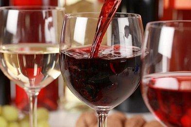 Kam v září vyrazit za skvělým vínem?
