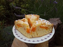 Meruňkový koláč z remosky