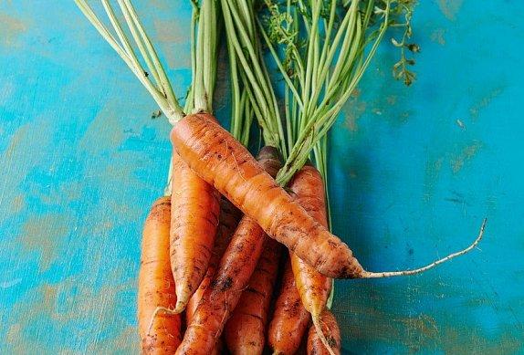 Dýně s kořenovou zeleninou na smetaně - dýňová omáčka