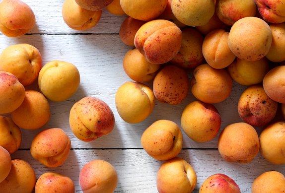 Tvarohový koláč s meruňkami