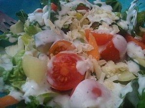 Zeleninový salát s domácí zálivkou