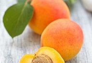 Koláč s medem a meruňkami
