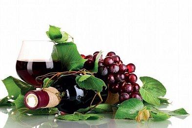 Naši vinaři boří bariéry