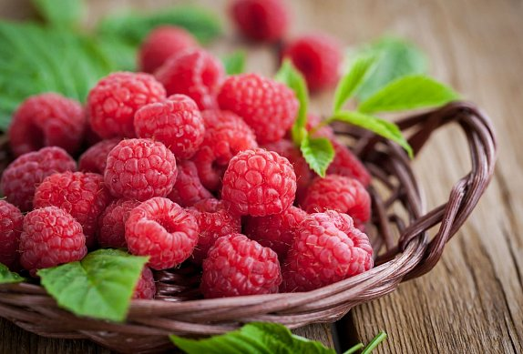 Ovocné želé s mascarpone